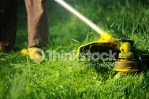 Weedeating